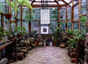 create a beautiful home garden